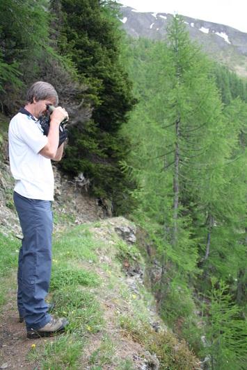 Blick in den Riedgraben - Bärefad