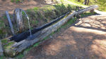 Brunnentrog beim 9spitzige Lärch