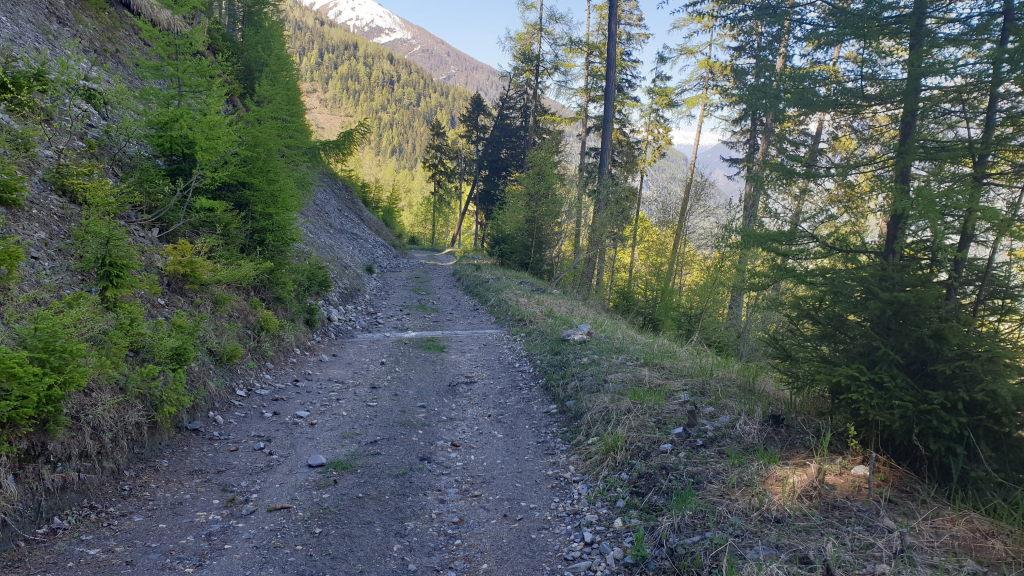 Forststrasse oberhalb Putz bim Lengcher