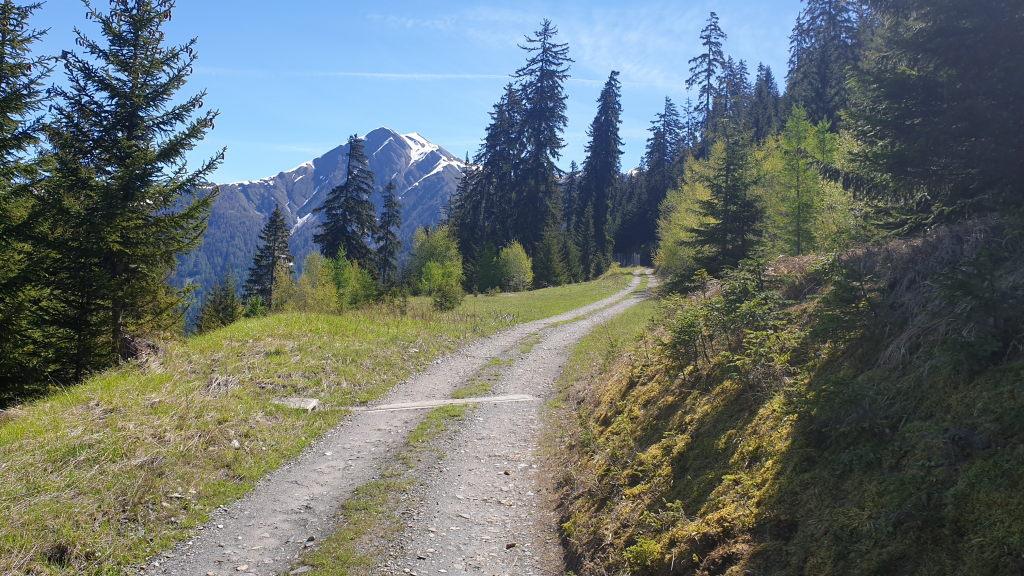 Lengcher Richtung Hirschzaun
