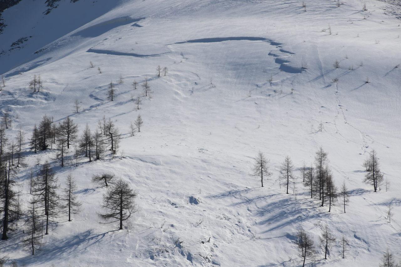 Schneebrettanriss