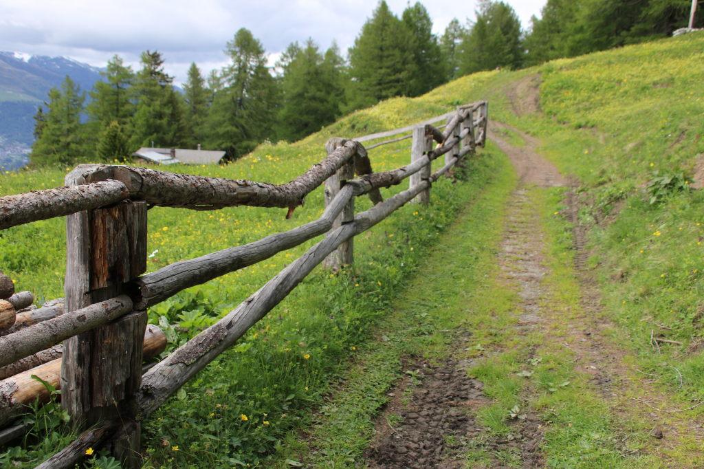 dieser Zaun wird ersetzt